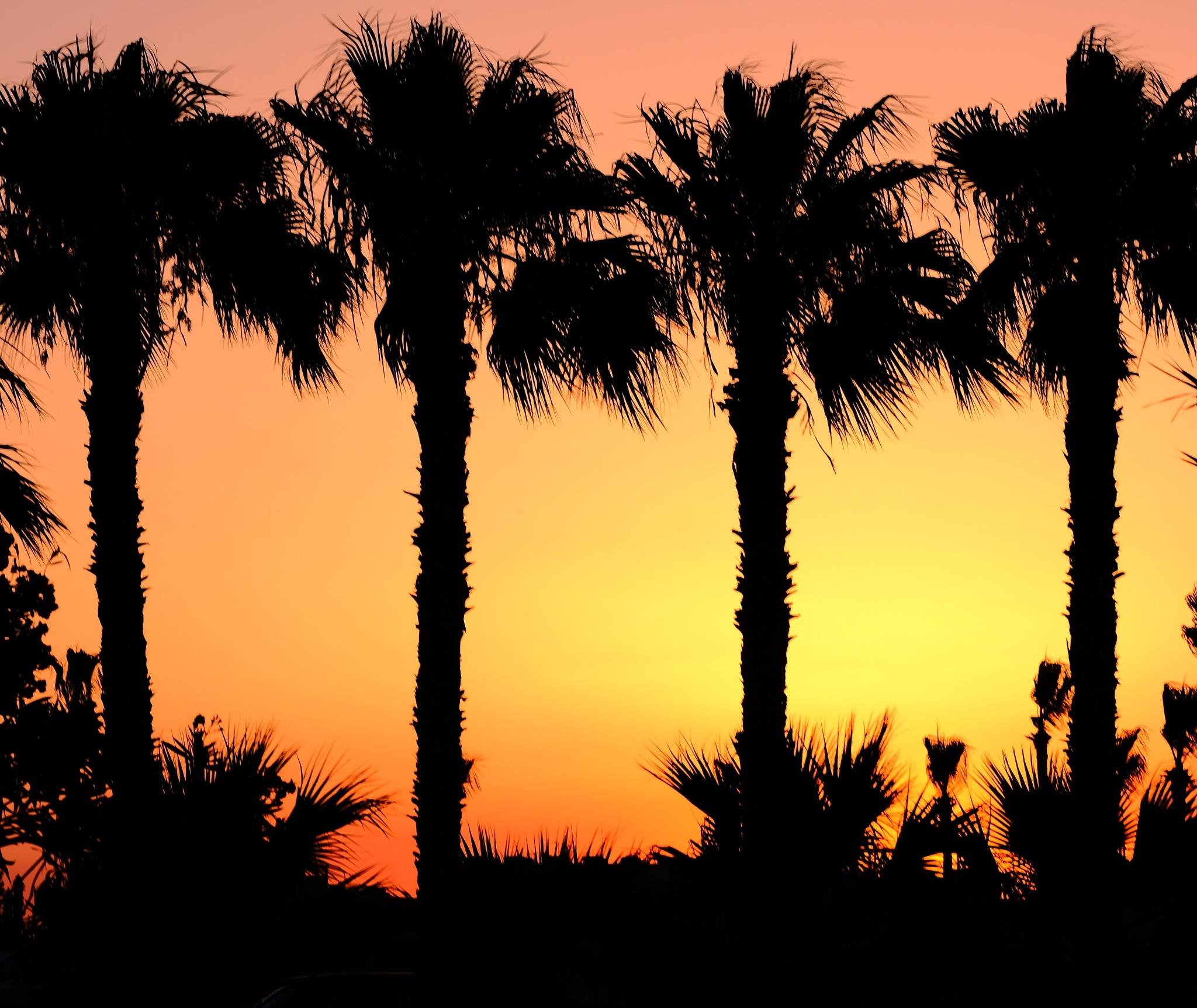 Burning sunset  by Rededia