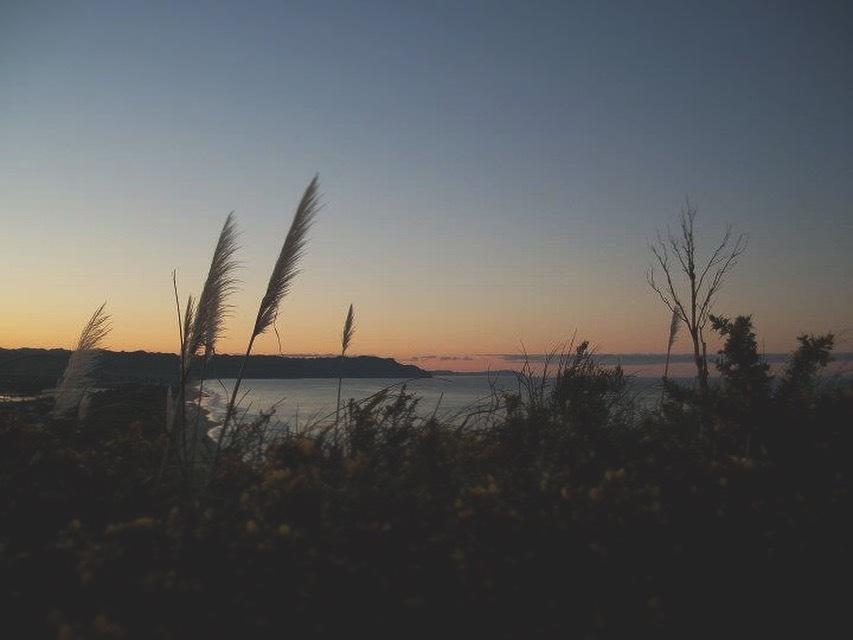 Kiwi sunset by Giorgia Lombardo