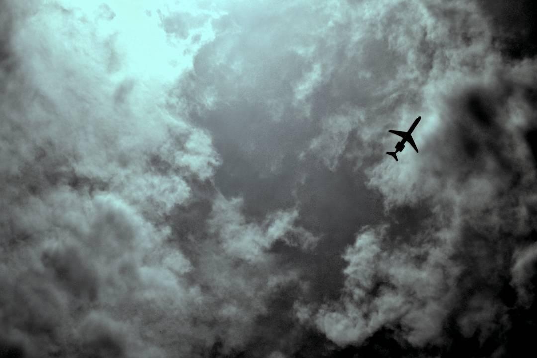 Flying by by Nēkē Flora