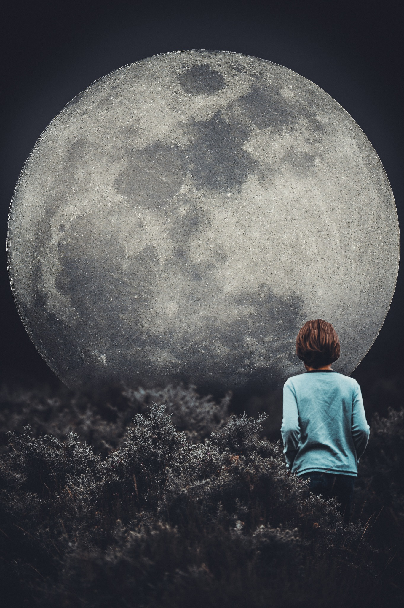 The boy and the moon! by Laura Balbarde