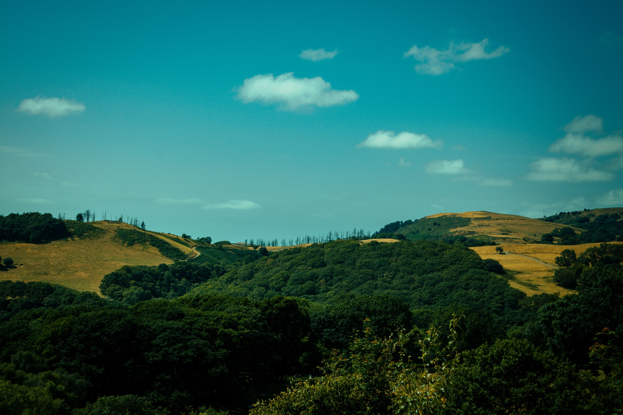 Rolling Hills by thomasormerodphotography