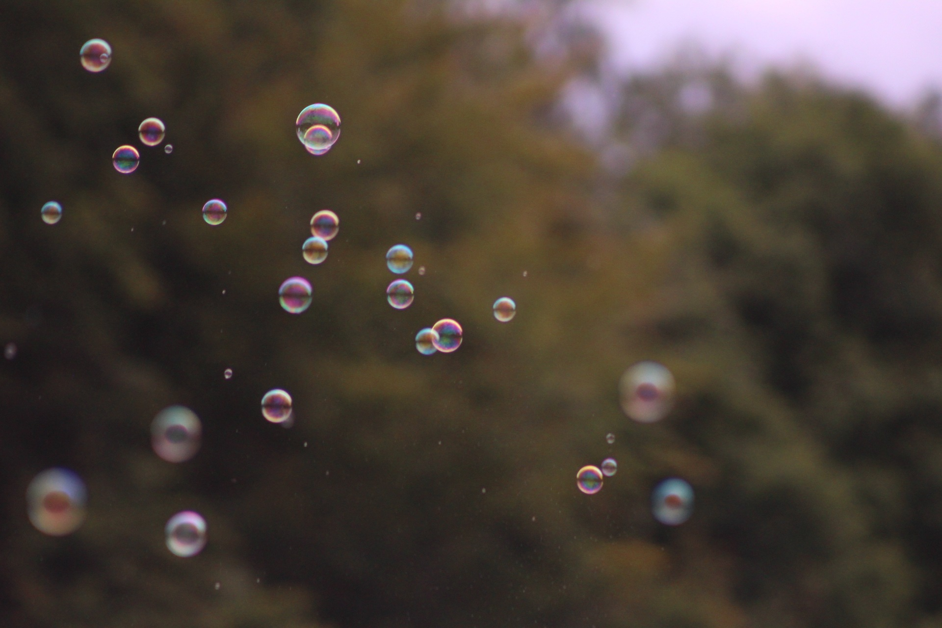 Bubbles by Jonathan Hoffmann