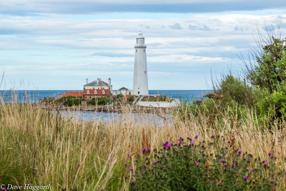 St Mary's Lighthouse by David Hoggarth