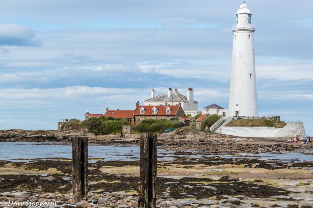 St Marys Lighthouse by David Hoggarth