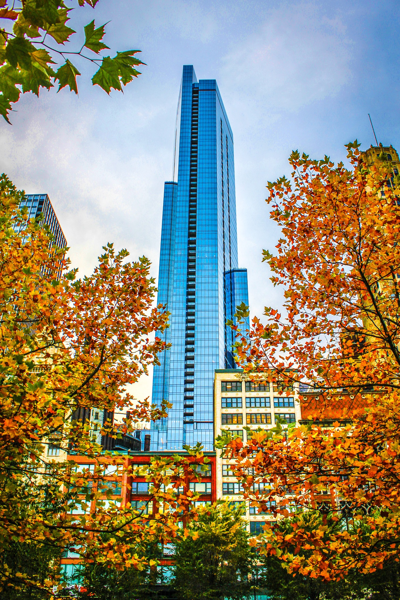 Downtown from the Park by ZS Photography