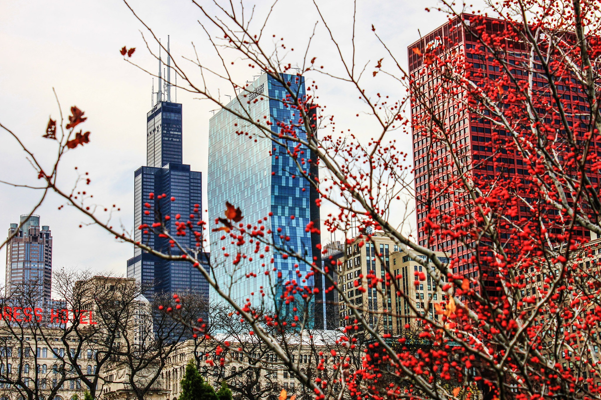 Sears Tower and the Red by ZS Photography