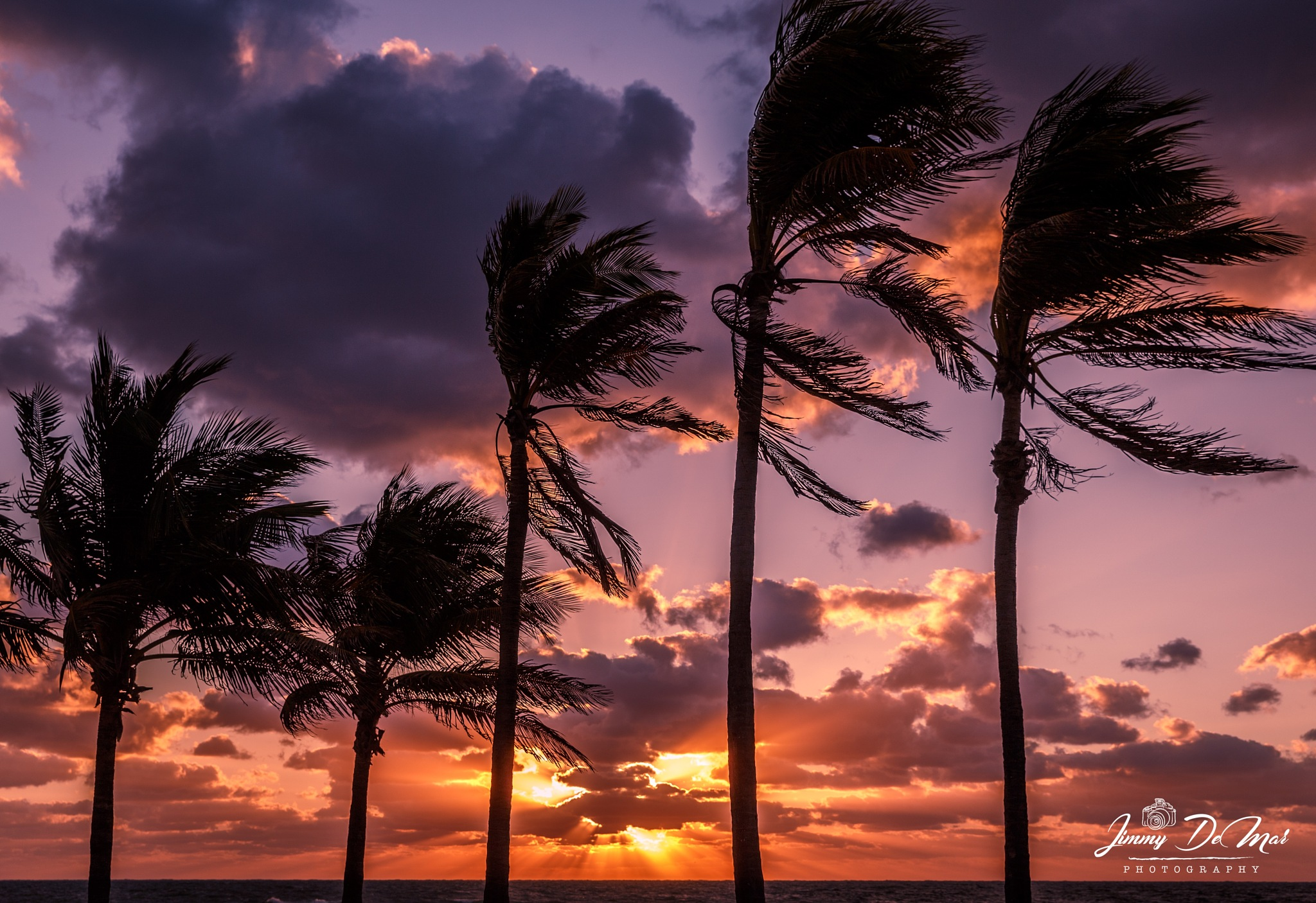 A South Florida Sunrise by Jimmy DeMar