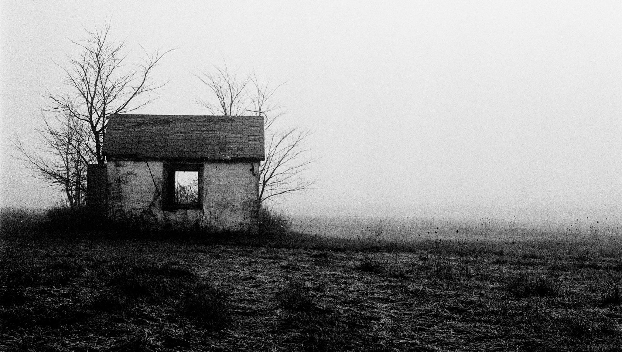 Empty Shack by Nick Mirkovich