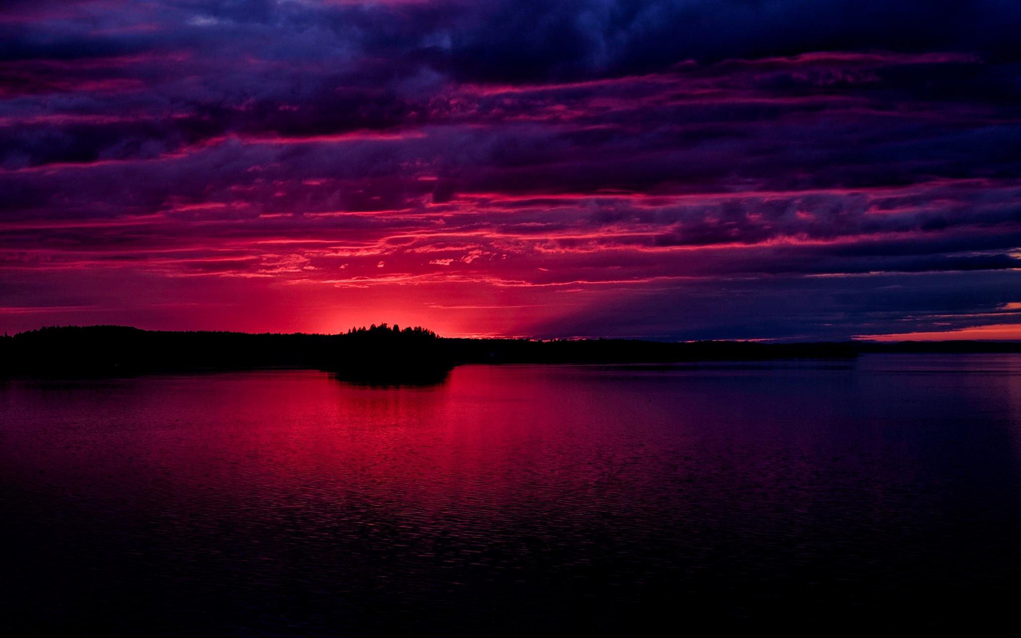 Magenta Sunset by Nick Mirkovich