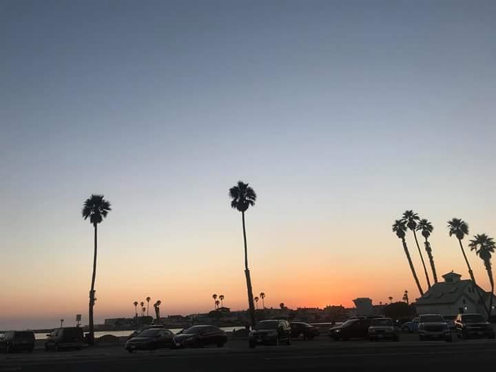 """Ventura Beatch!!! by Dr. Karen Bagdasarian """"Mauler"""""""
