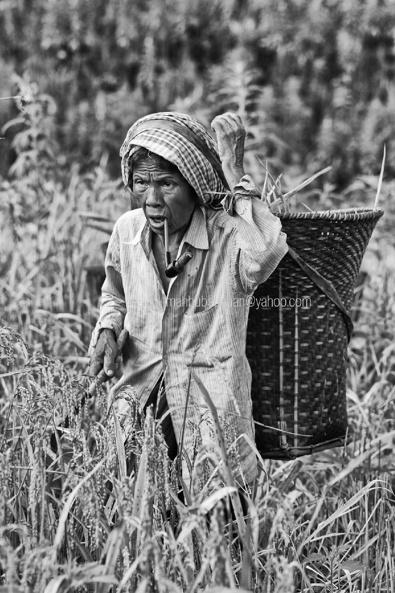 Photo in Portrait #portrait #faces #people #tribal people #working woman #bandarban