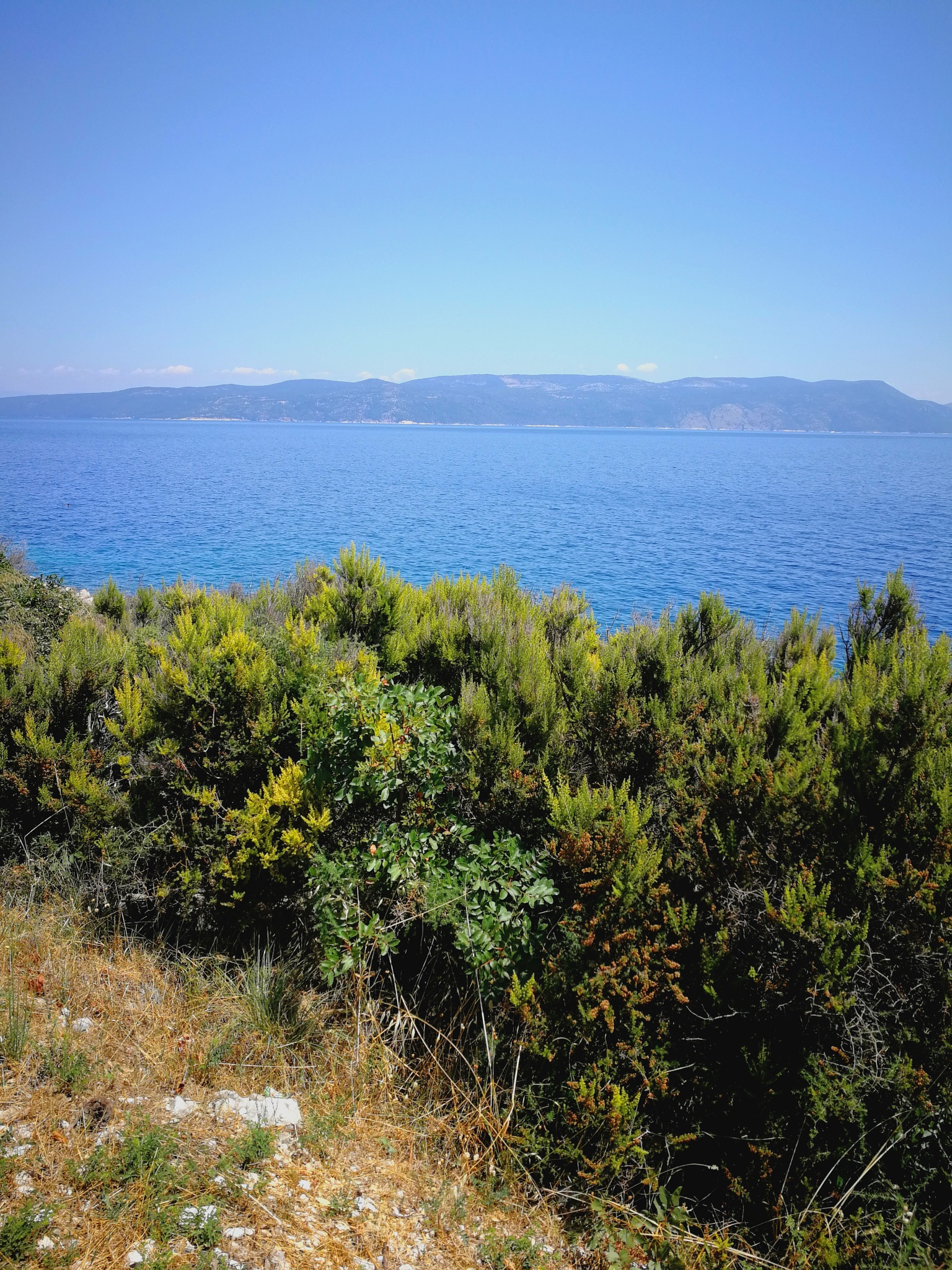 Croatia - Exploring The Woods by Kristin Carlsson