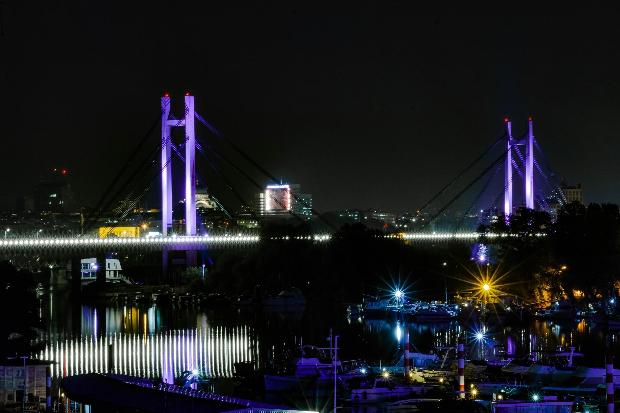 Just a bridge  by Daniel Paltsikov