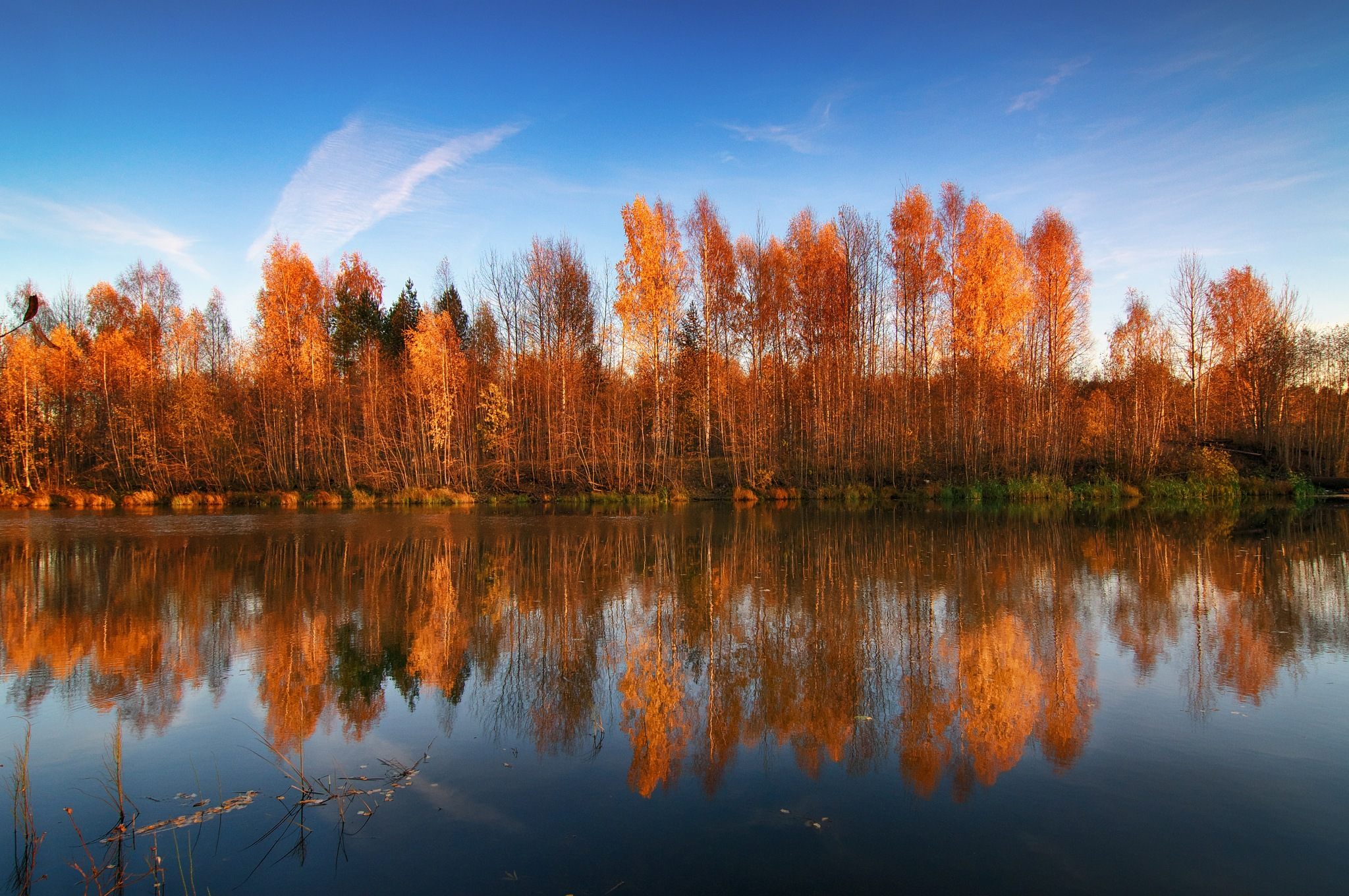 Autumn here by Denis