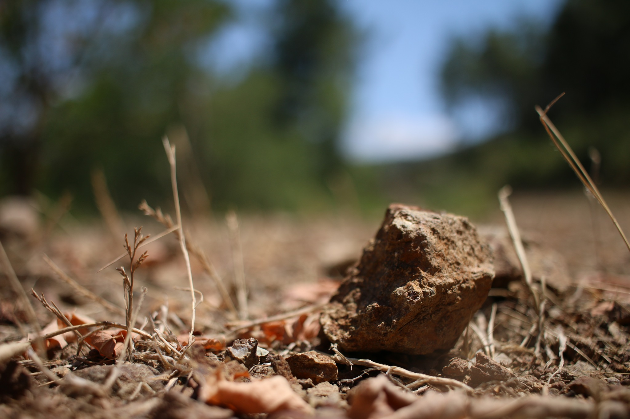 Dry Lands by Buğra Mert Alkayalar