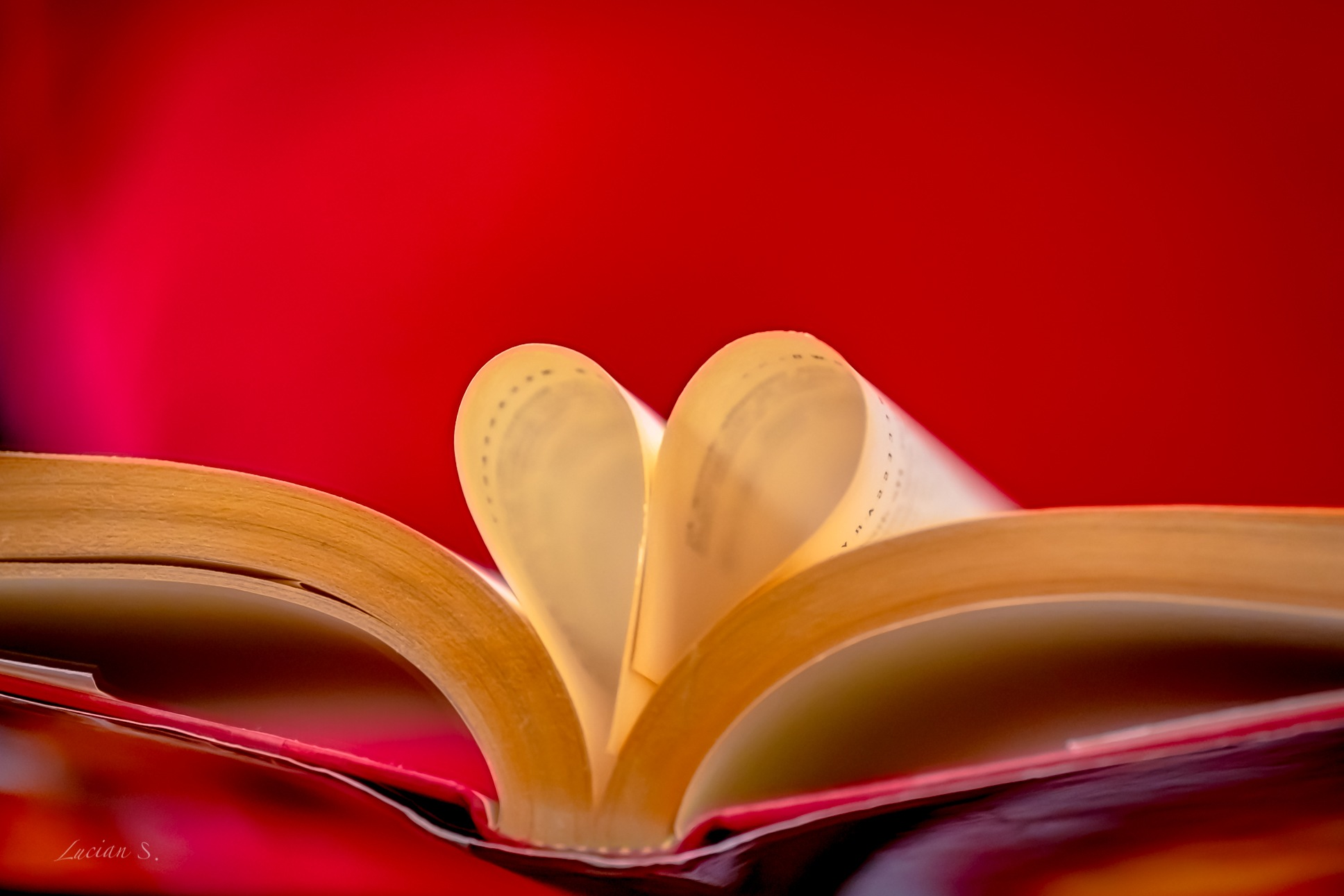 When you give love and receive love you are writing the best chapters of your life.Happy Valentine's by Lucian Smarandache