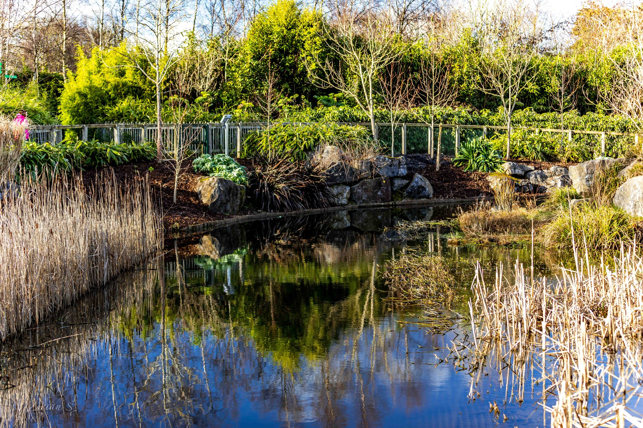 Dublin Zoo! by Lucian Smarandache