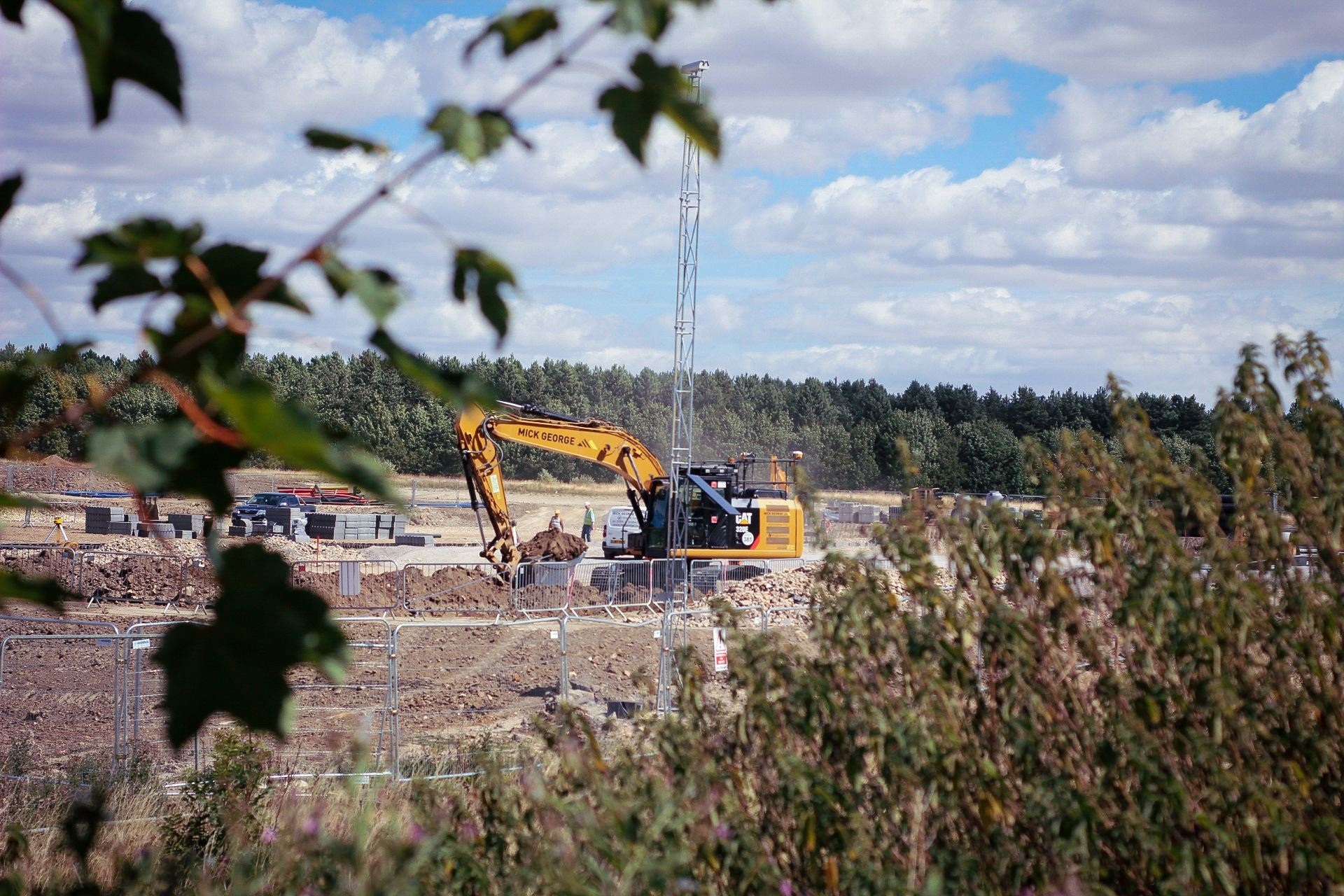 nature destruction  by Dan whitney