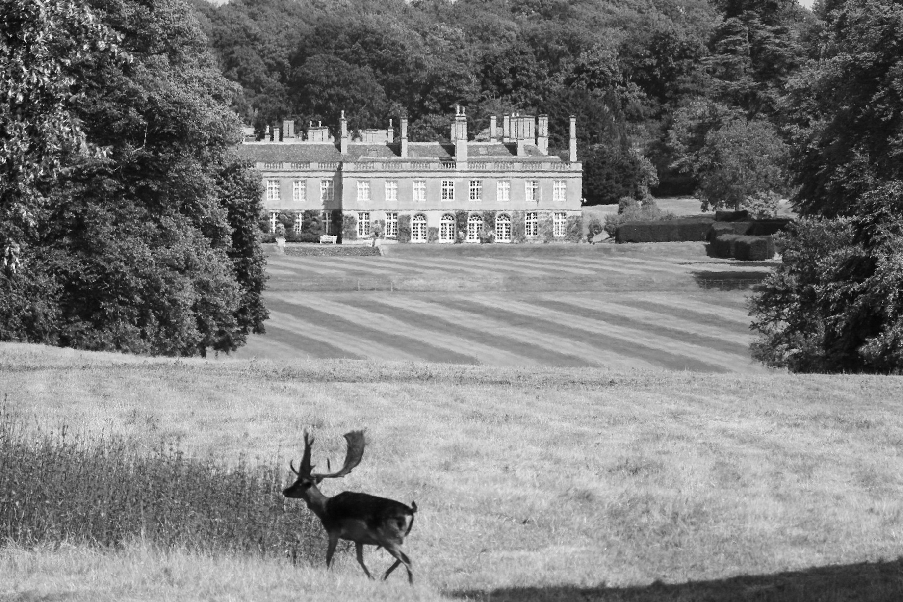 boughton house by Dan whitney