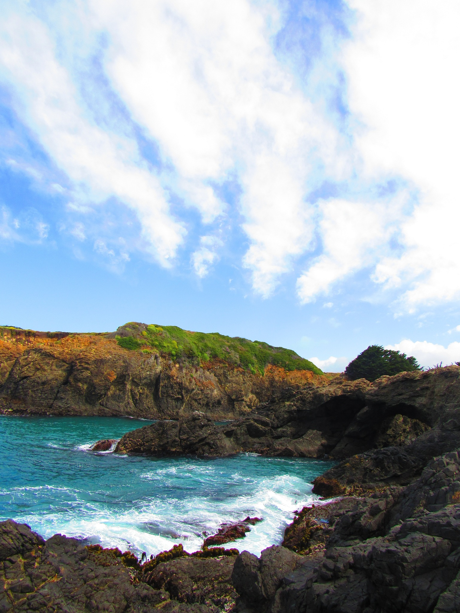 Rocky Shores by Samantha Acker