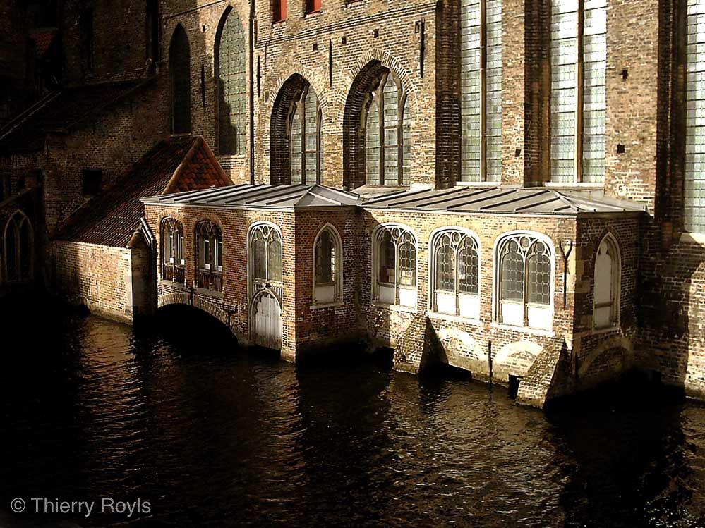 Library by Thierry Royls