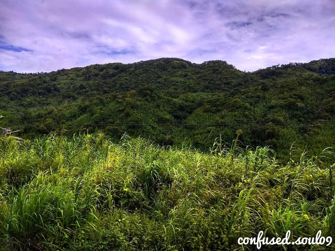 Grassland Hills by Devayan Goswami