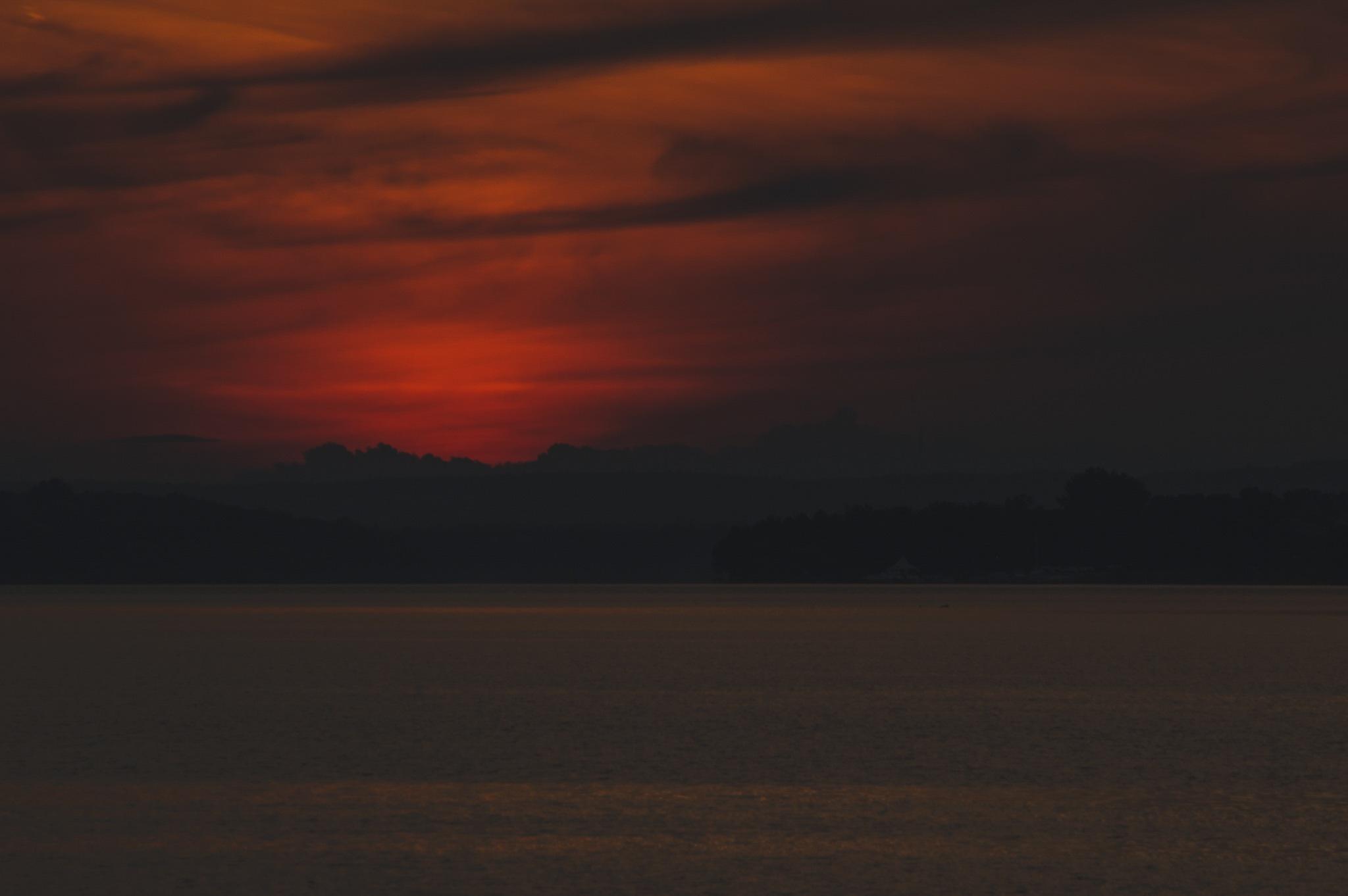 Dark red by William Montpetit