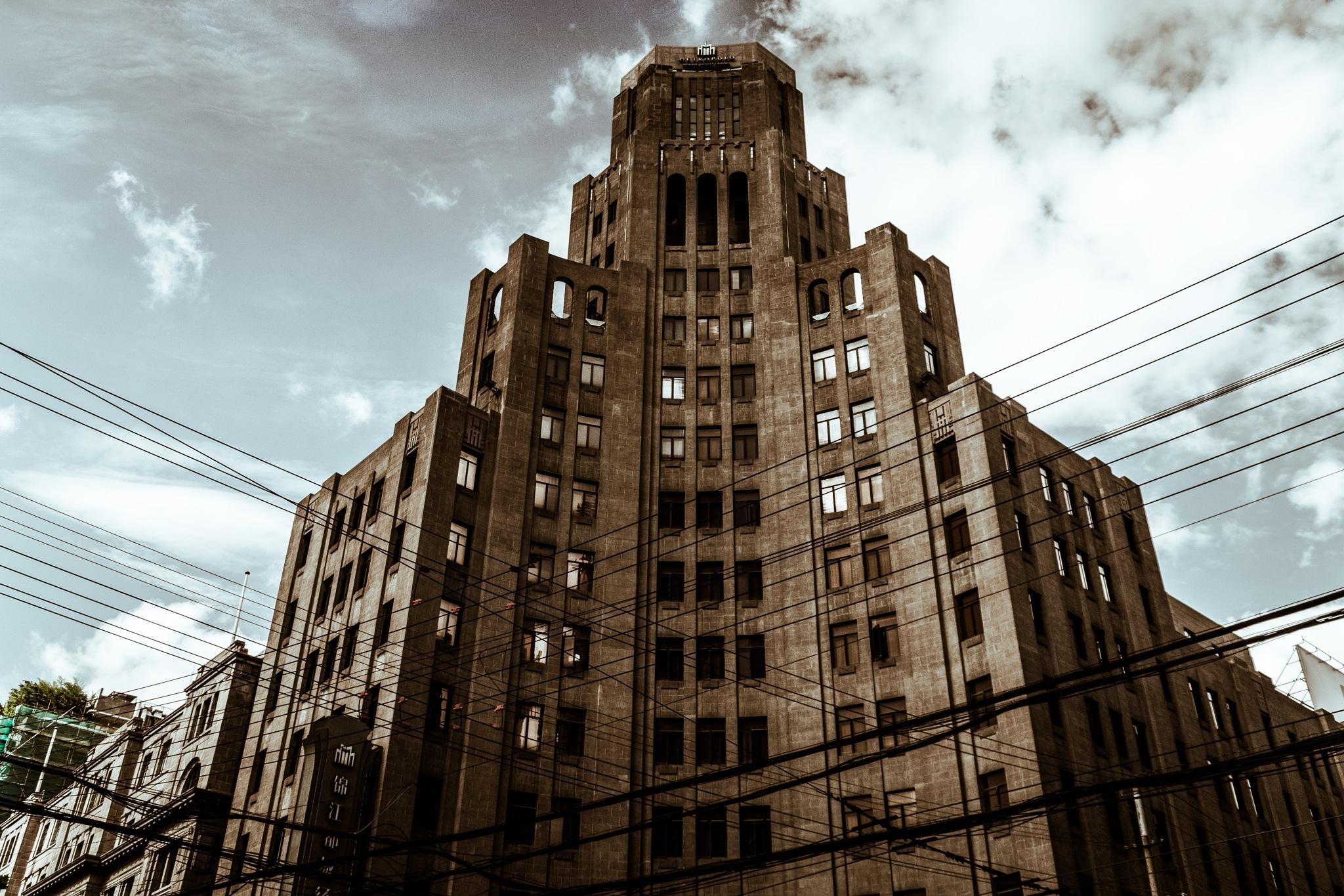 Hotel Building by Oleg Shibanov