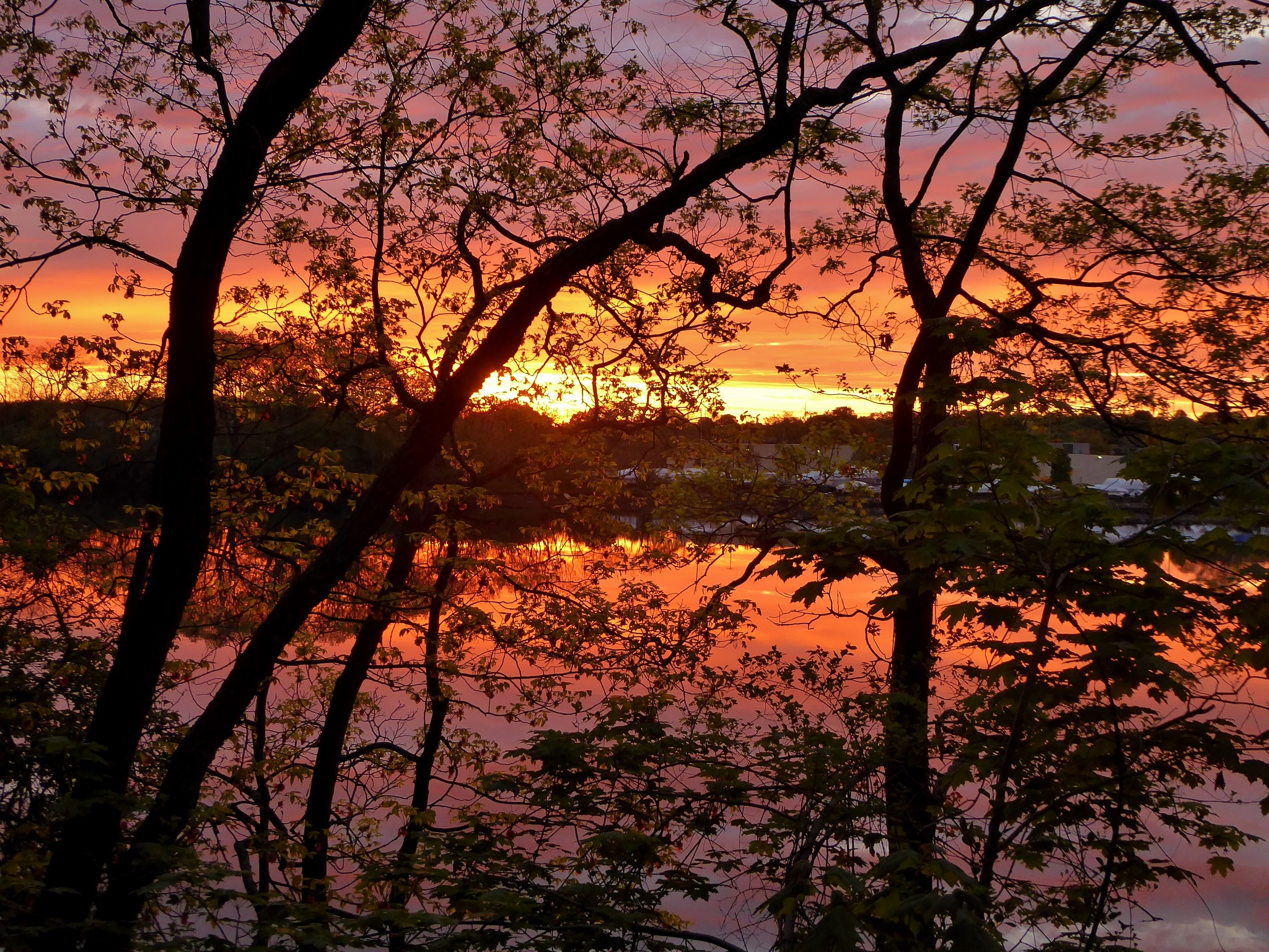 Sunrise over the Bass River from Green's Hill by D. Scott Hufford