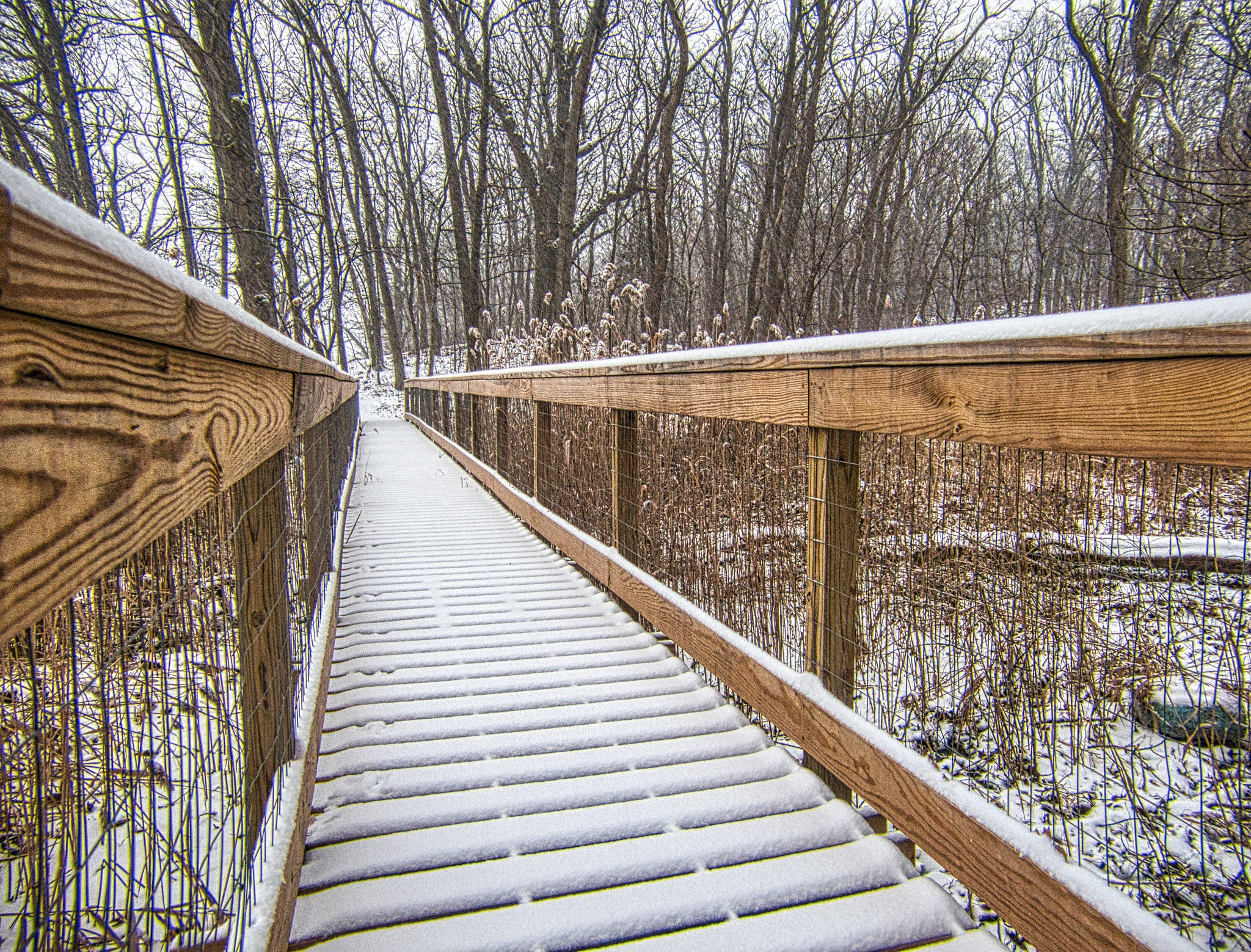 Green's Hill Bridge in the Snow by D. Scott Hufford