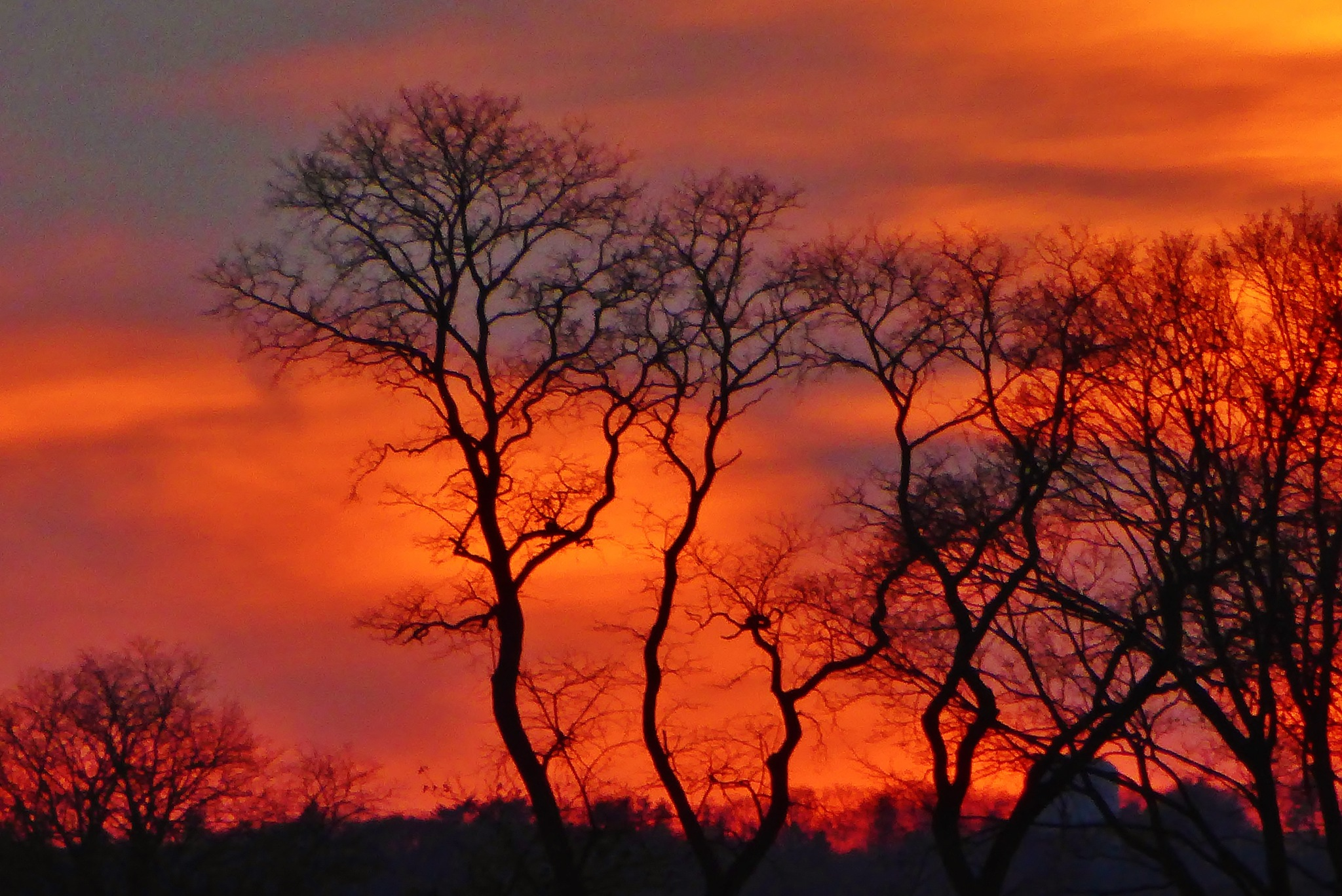 Sunset Silhouette by D. Scott Hufford