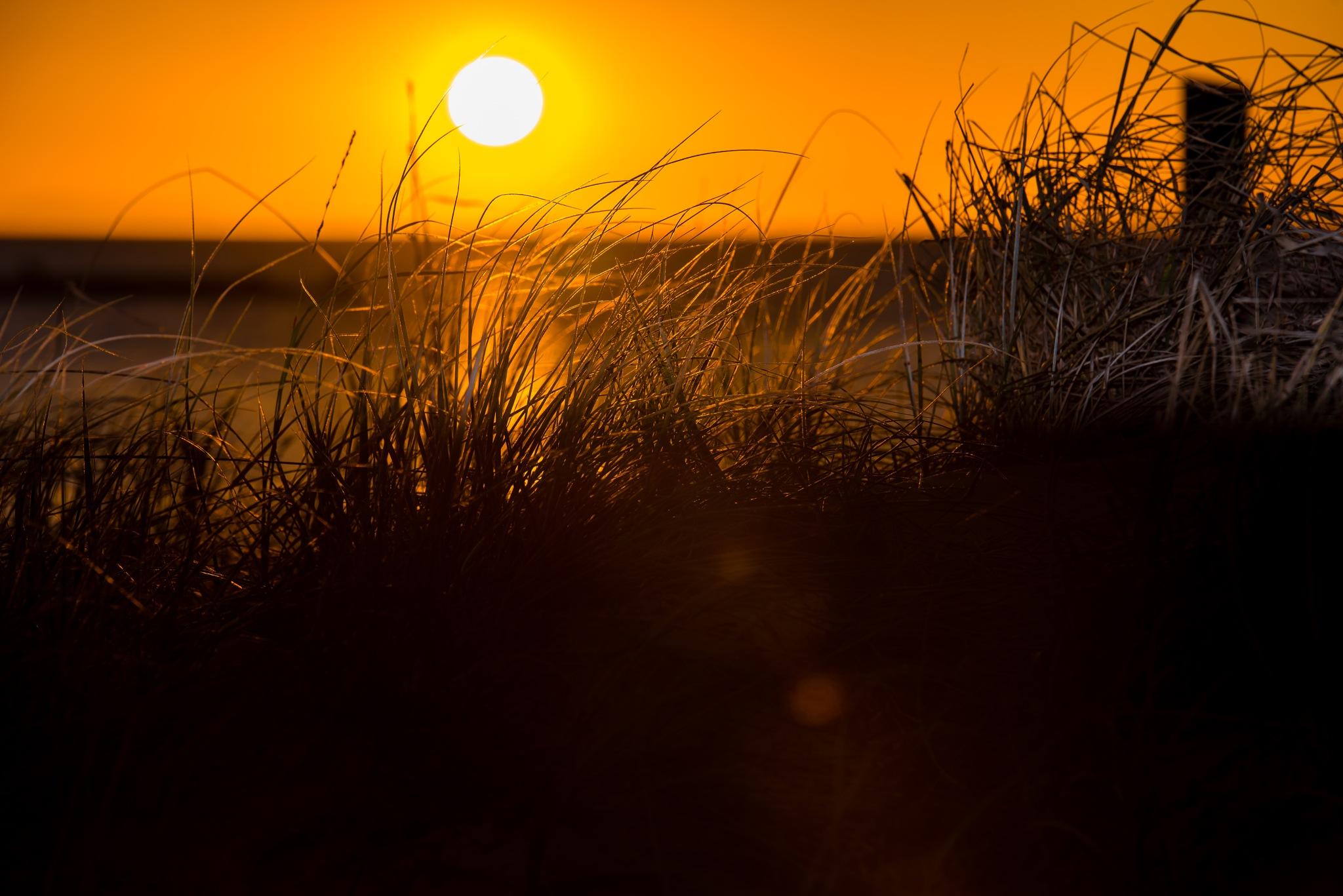 sunset  by Daltons photography