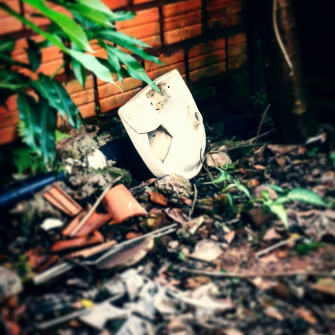 Abandoned by Betty Carvalho Ramirez