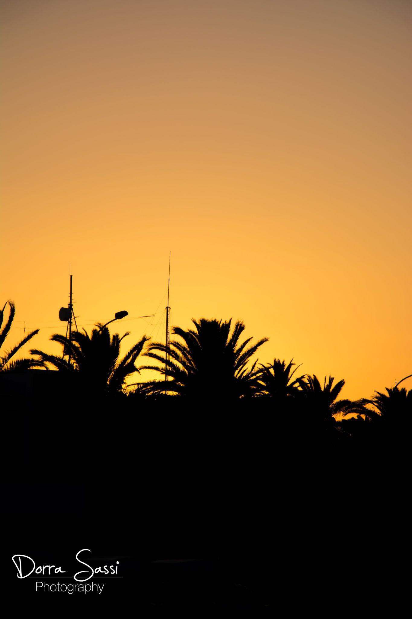 sunset by Dorra sassi