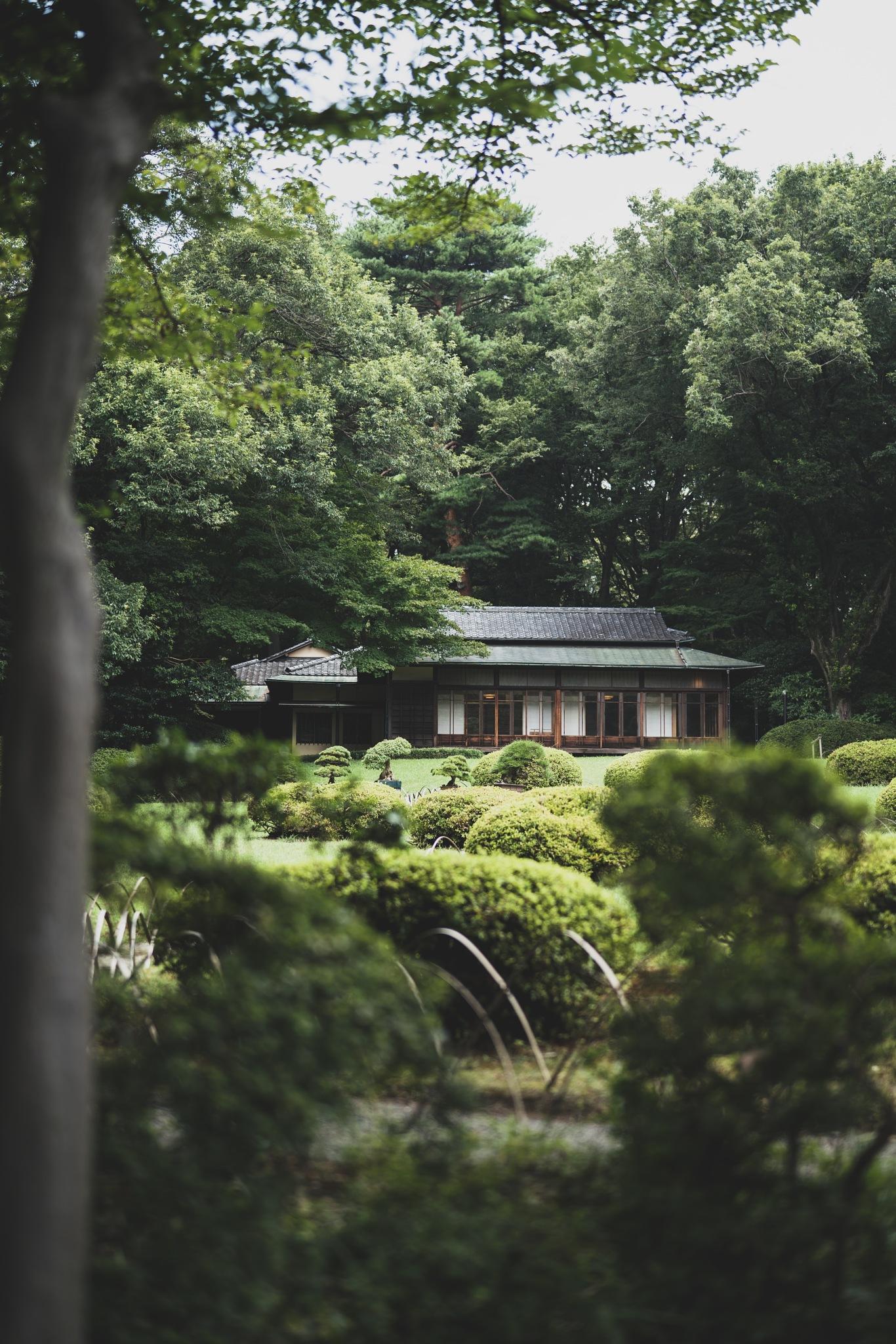 Meiji Jingu Inner Garden by Hunter Sluka
