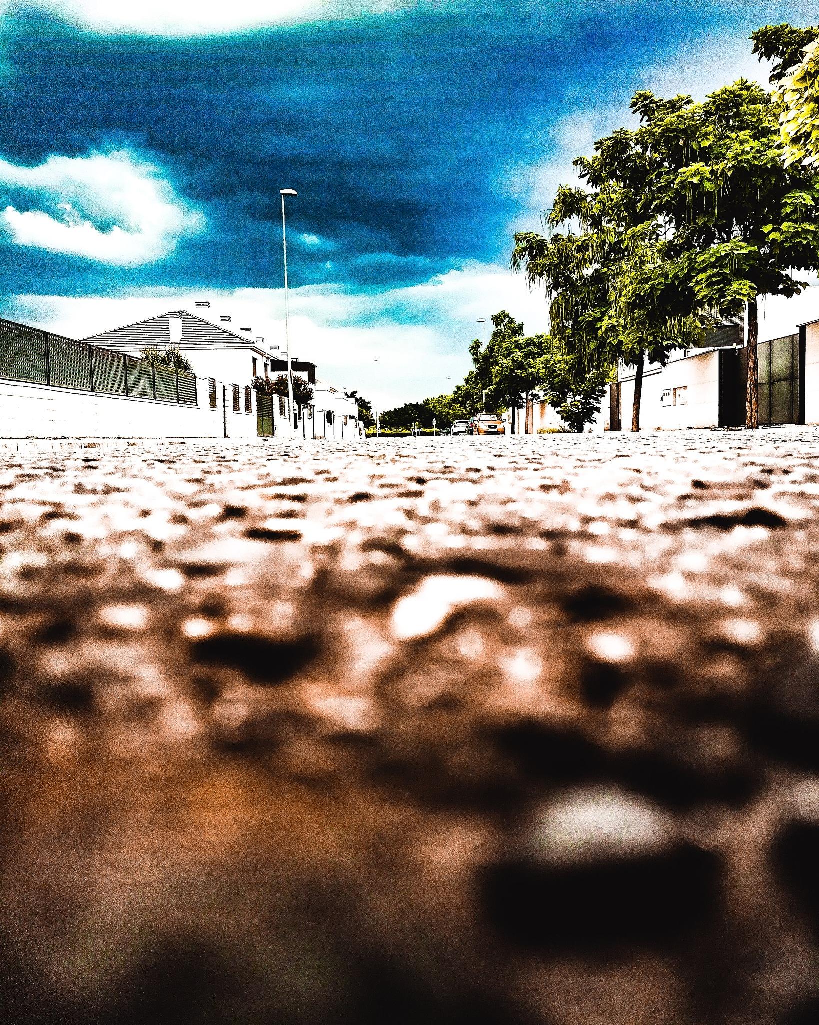 street  by Sr_Catch_19