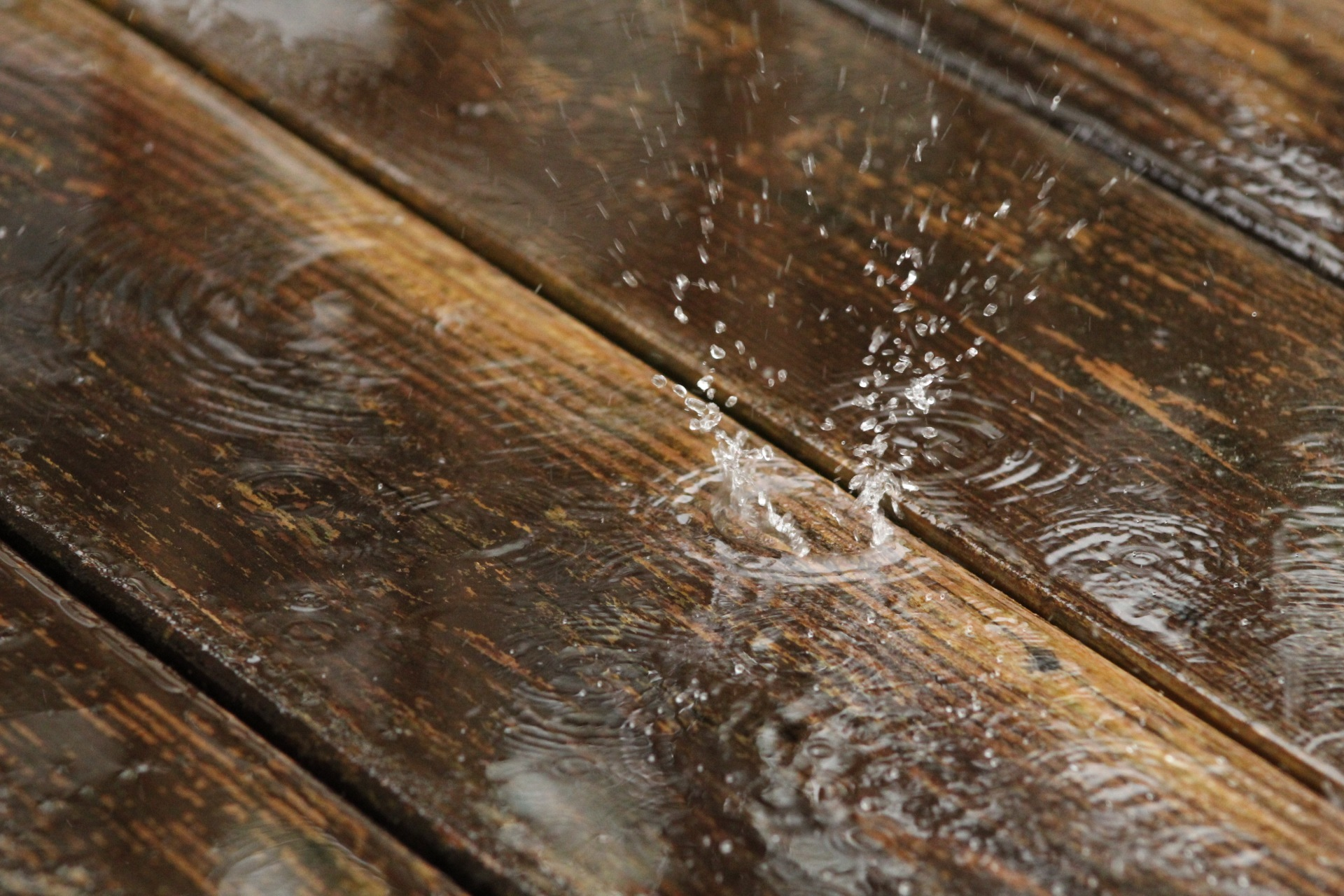 Splash by JenniferNooyen