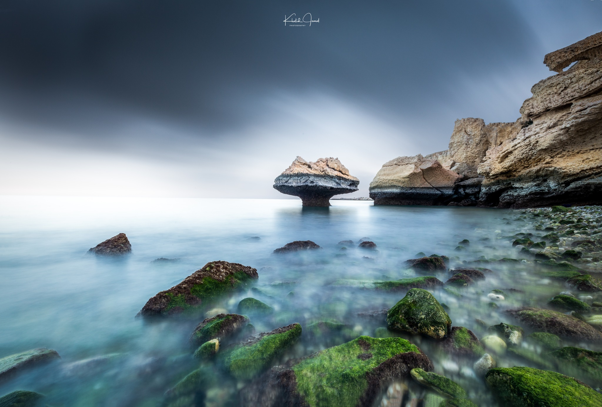 The Mushroom Coast by Khalid Jamal Abdullah