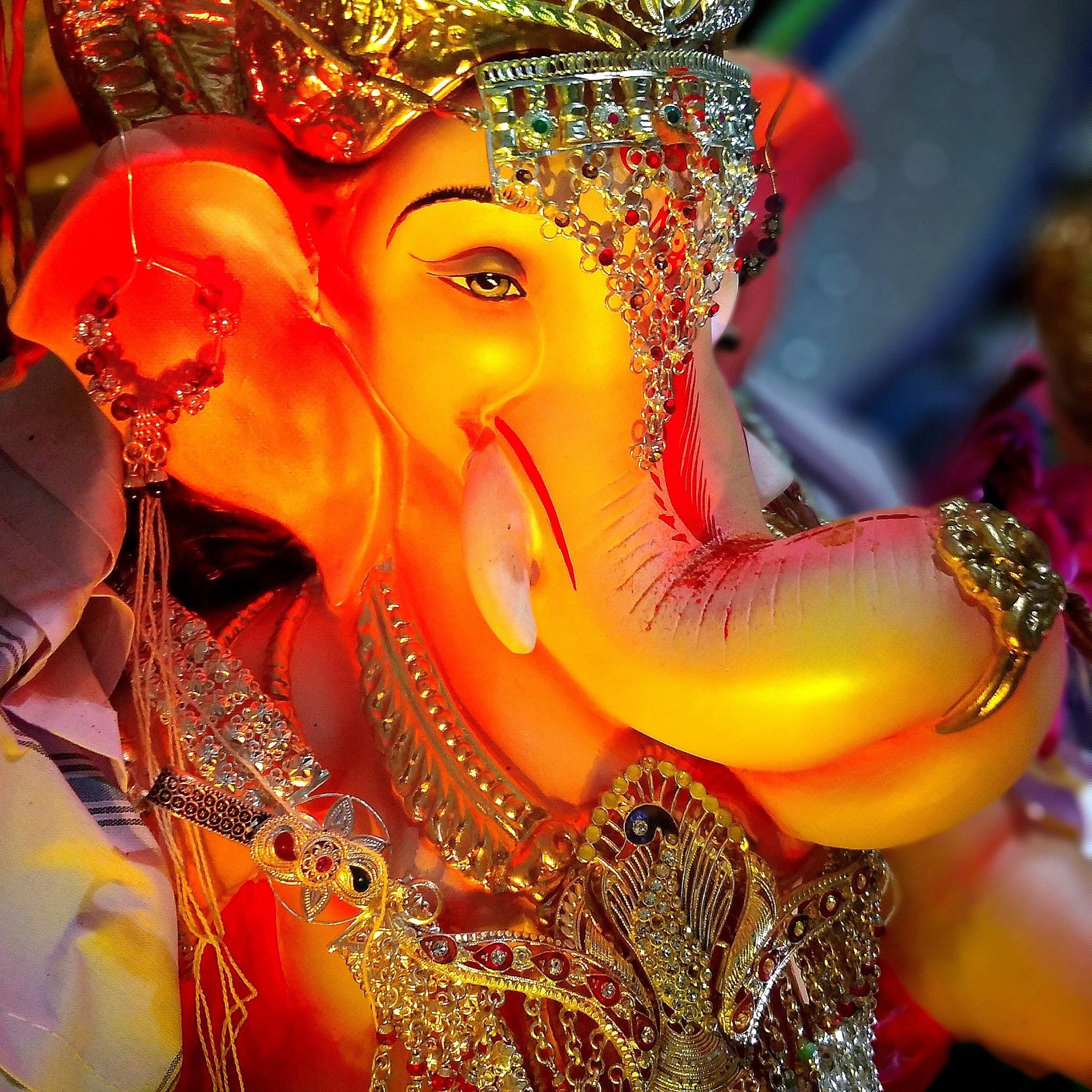 Ganesh Festival  by Amit Gajraj Chavan