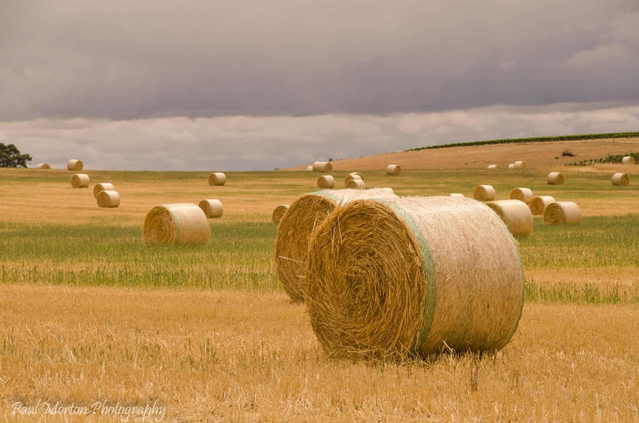Hay bales by Paul Morton