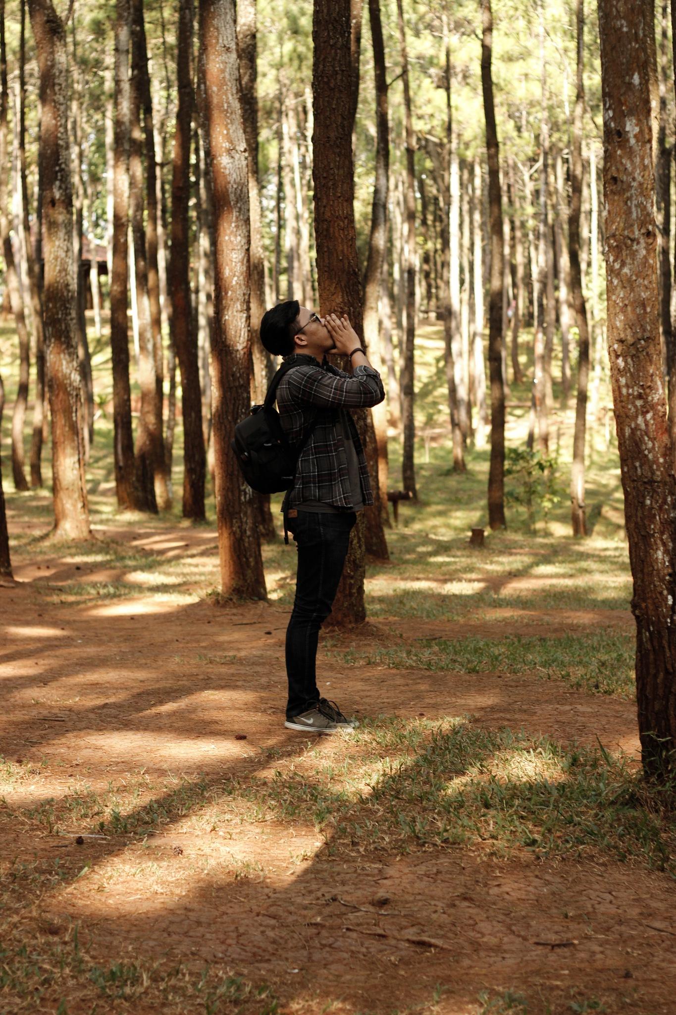 The boy and Pine by Simon Giando