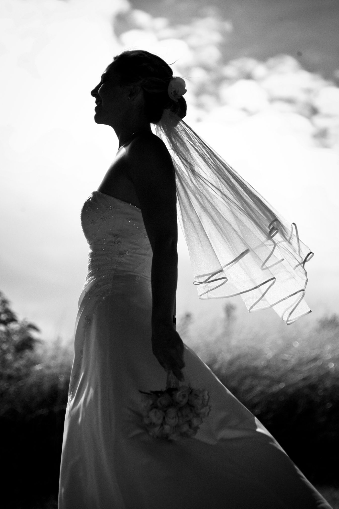 Silhouette 2 by Andrew Howes