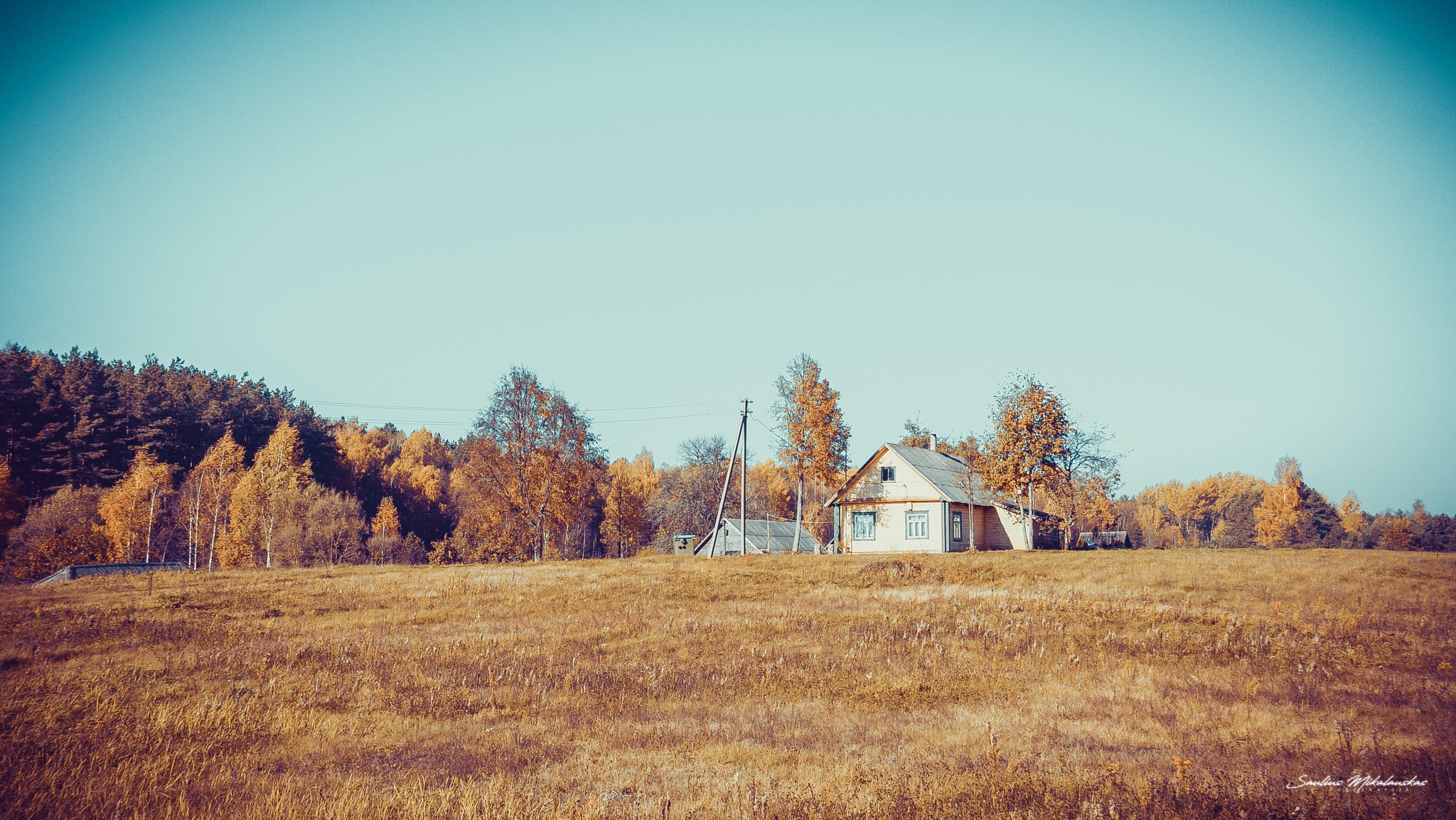 Homestead by Saulius Mikalauskas