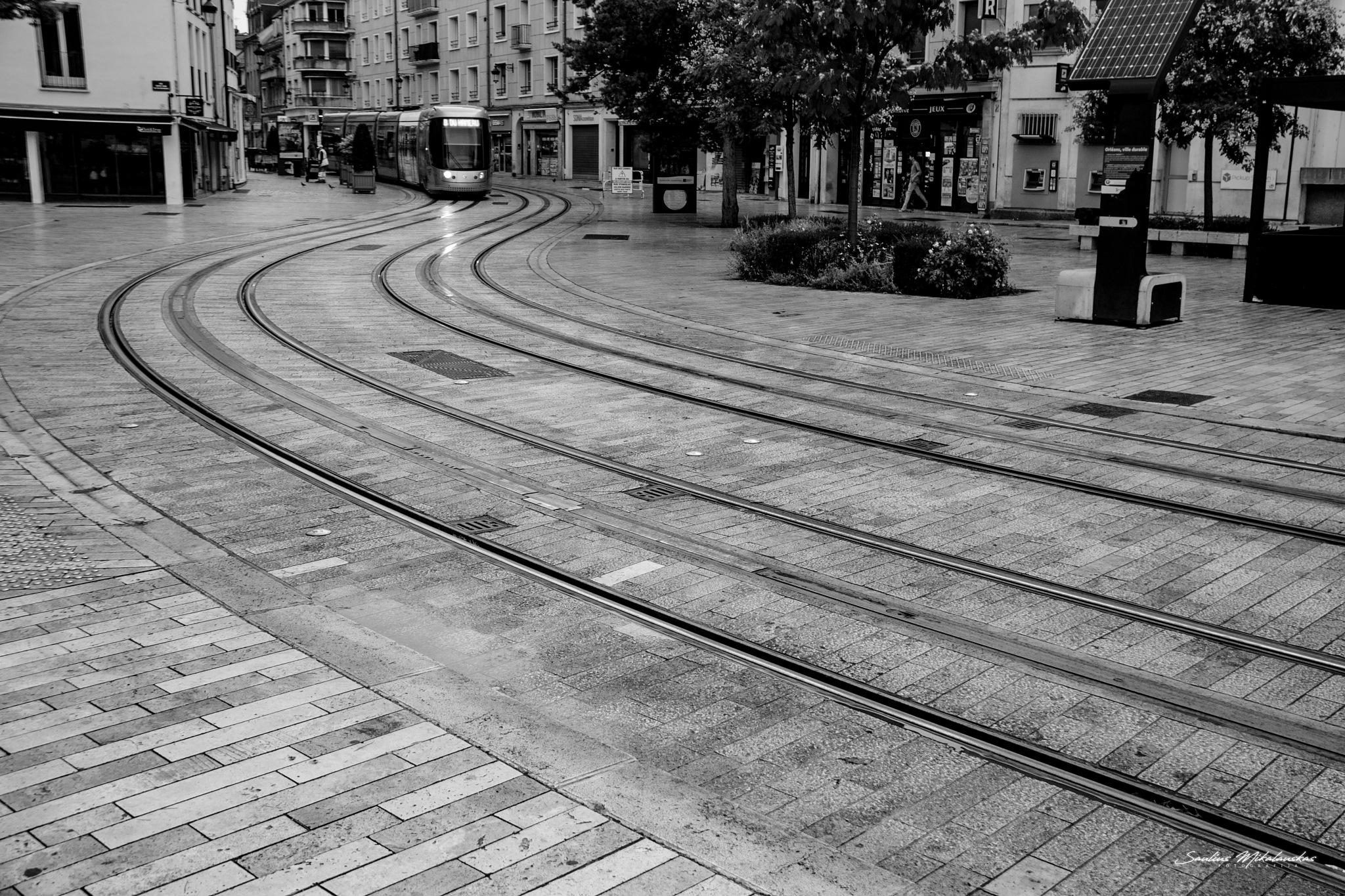Path by Saulius Mikalauskas