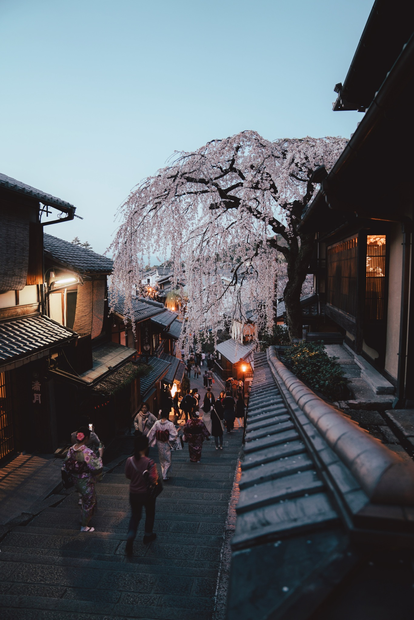 Trip to kyoto by Yasu Ochi