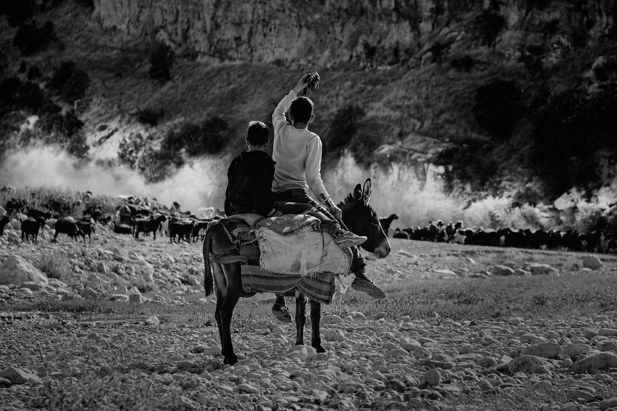Untitled by Mehmet Etiz