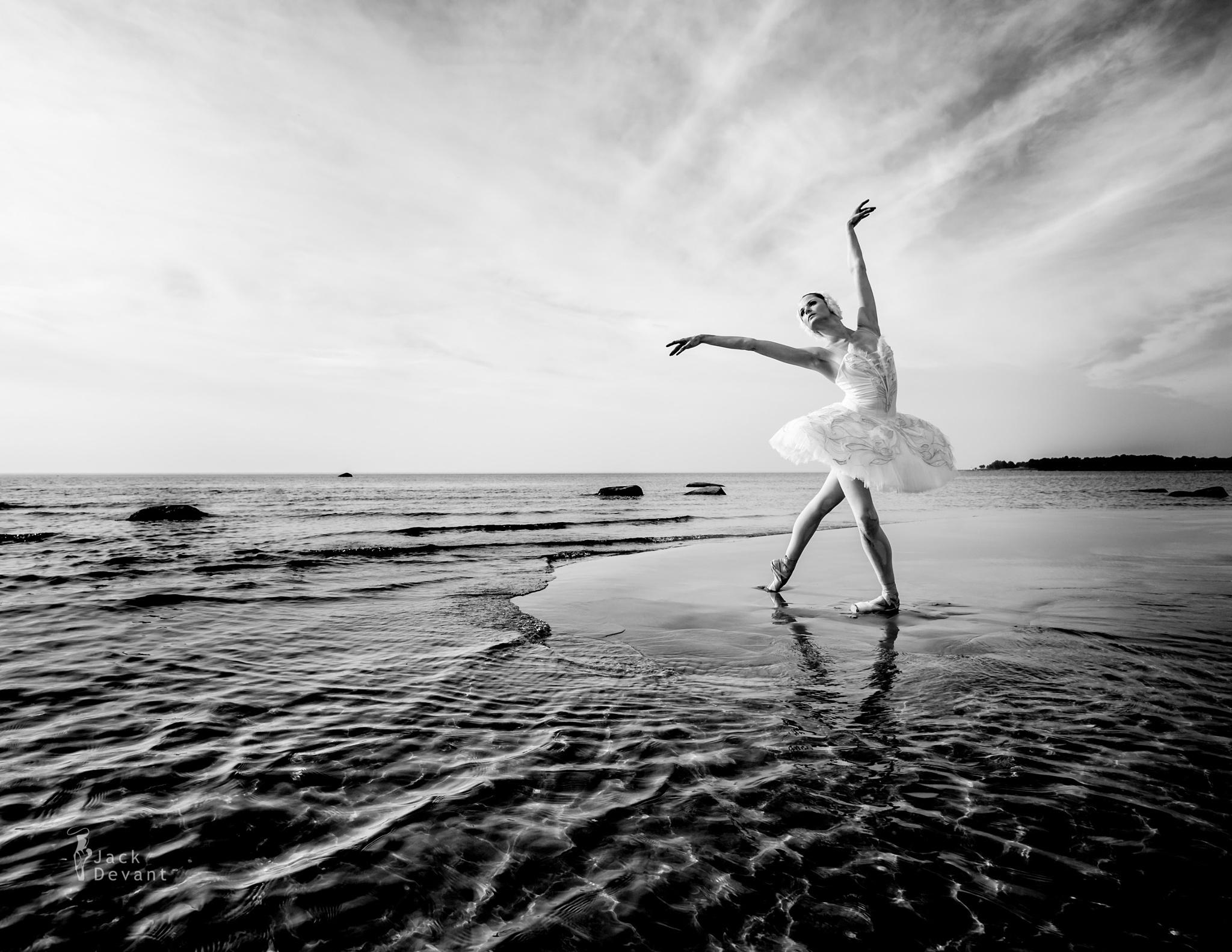 White Swan II by Jack Devant