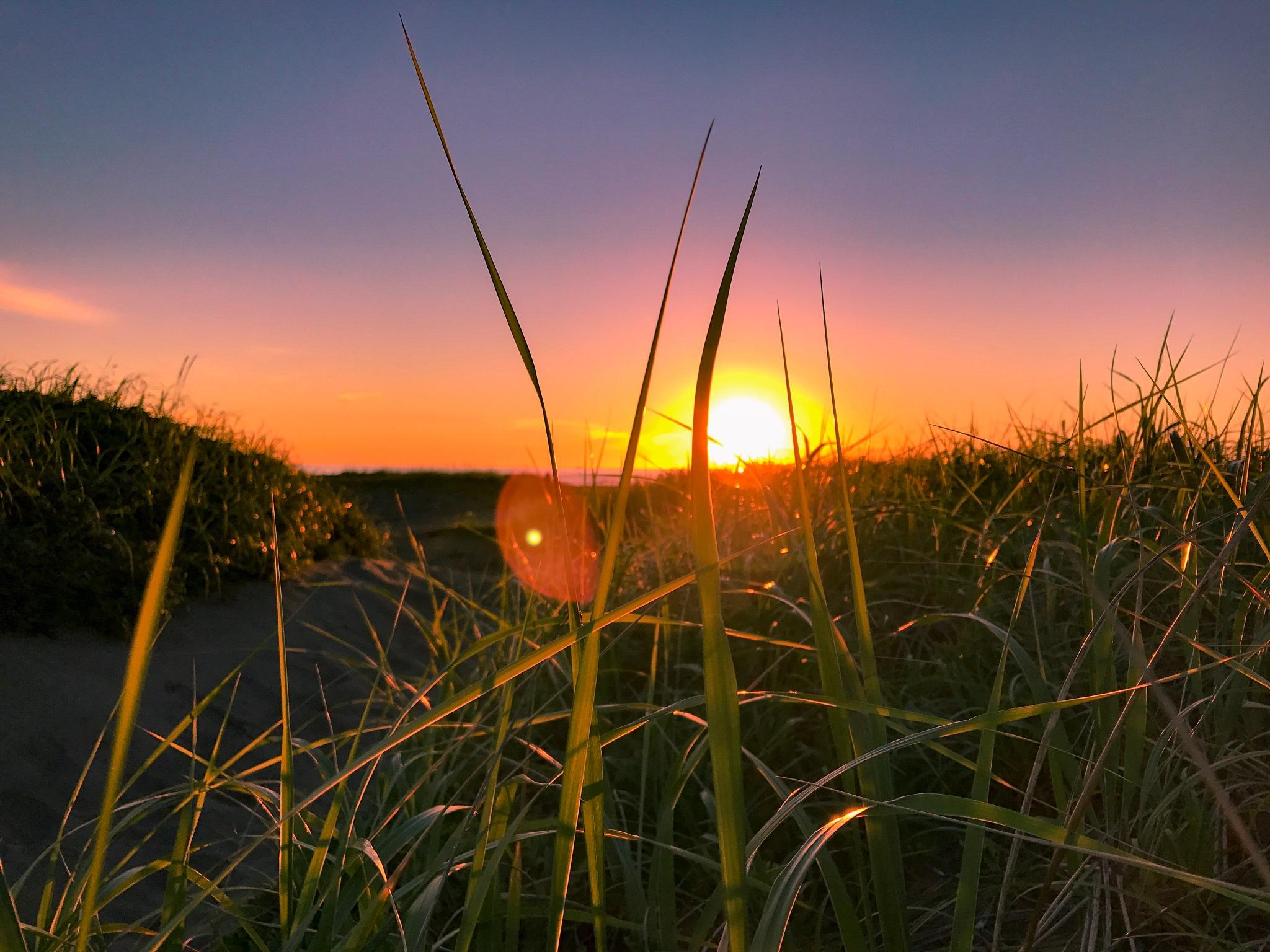 Sunset by Vladimir Sakharov