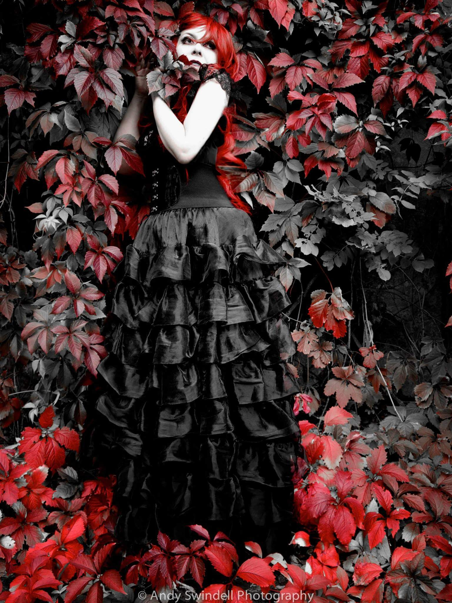 the caress of ivy by Andy Swindell