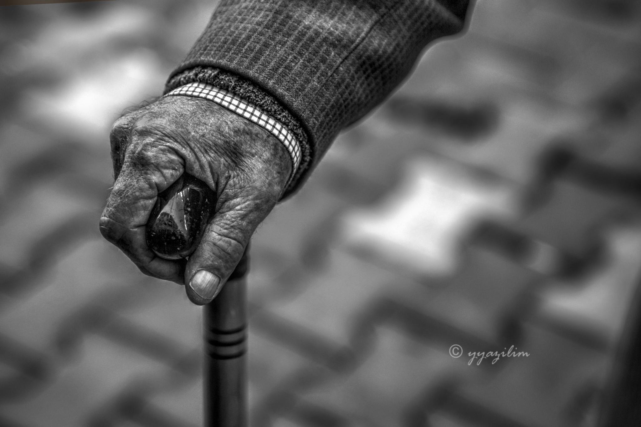 Tutunacak el ve dal by İbrahim YILDIZ